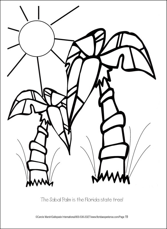 Florida Coloring Page