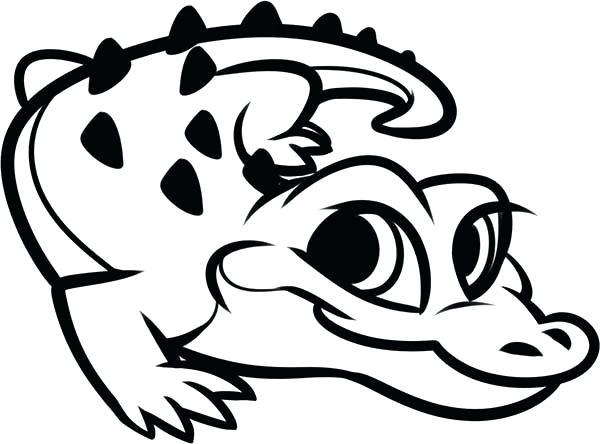 600x444 Florida Gators Coloring Pages
