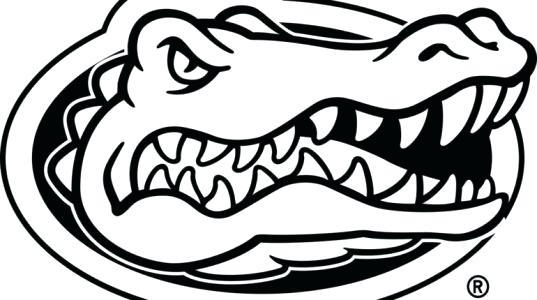 537x300 Florida Gators Coloring Perfect Gator Coloring Pages