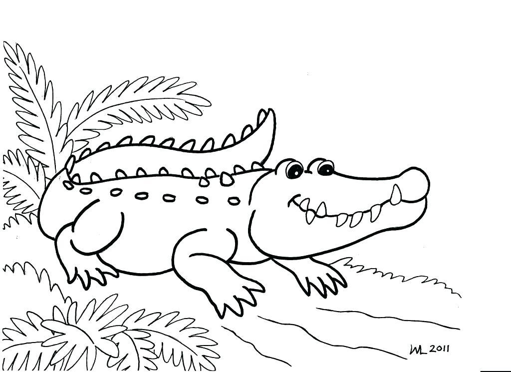 1024x745 Gators Coloring Pages Gator Coloring Pages Realistic Gators