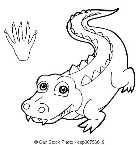 450x470 Gator Coloring Pages