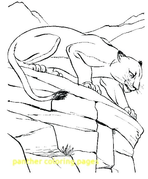 476x576 Panther Coloring Page Panther Coloring Pages With Panther Adult