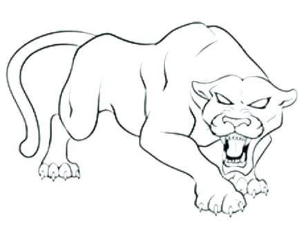 440x330 Florida Panther Coloring Page