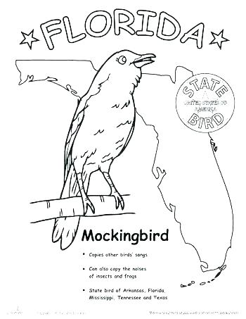 350x453 Florida State Flag Coloring Page Flag Coloring Page State Flag