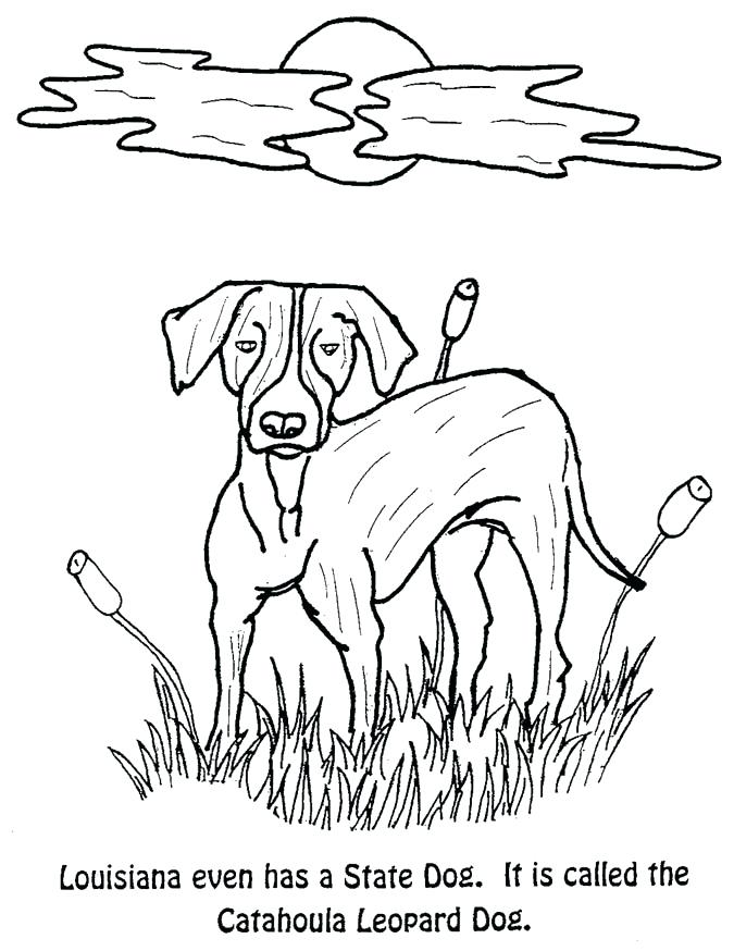 675x874 Florida State Flag Coloring Page State Crustacean A State Dog Top