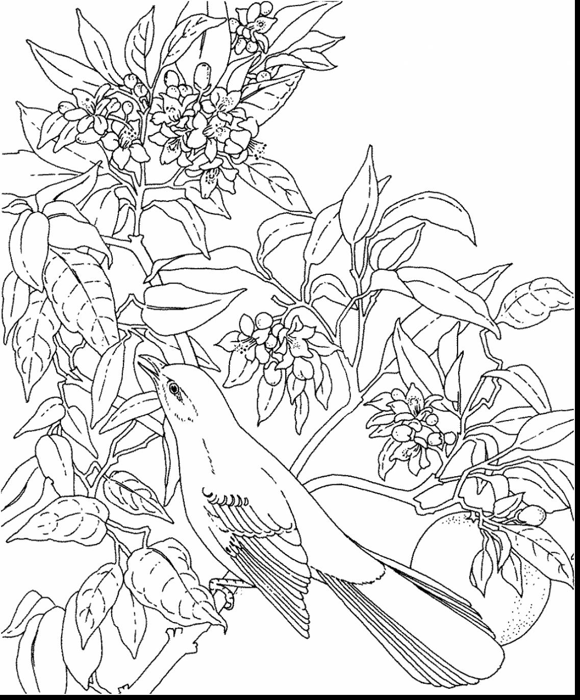 1137x1373 Best Of Flower And Bird Coloring Pages Collection Printable