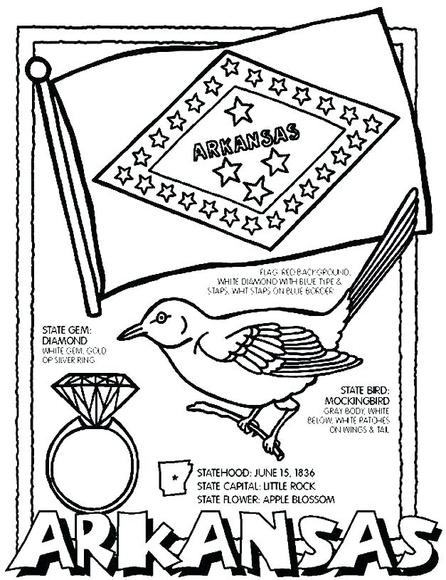 627x815 Florida State Flag Coloring Pages