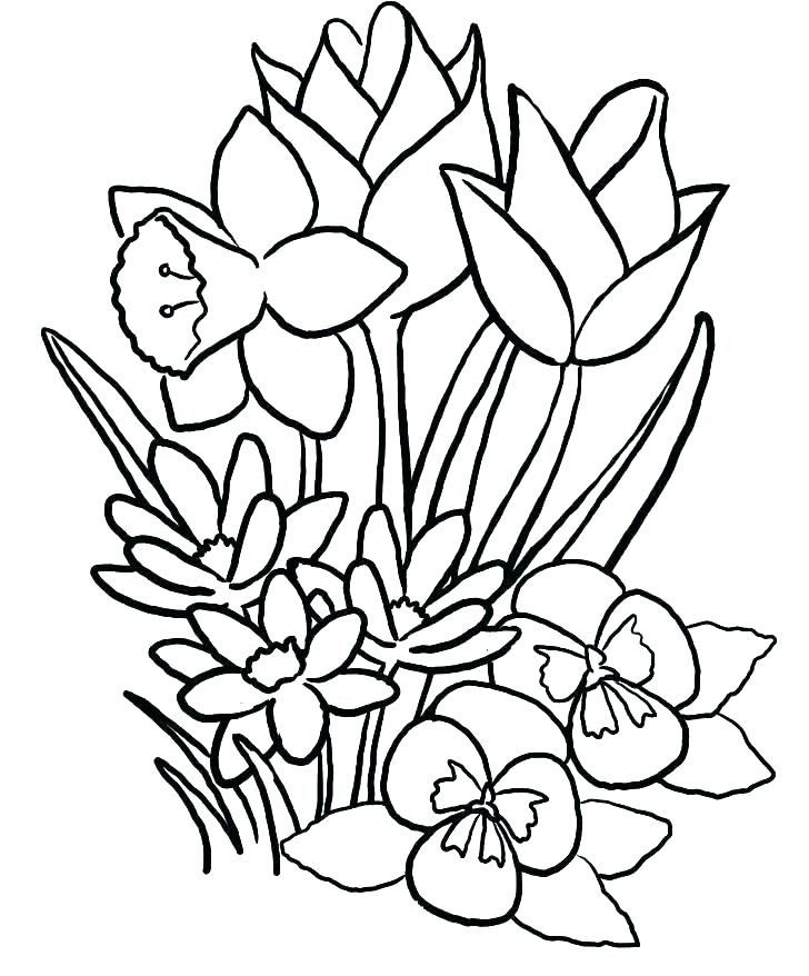 728x878 Flower Bouquet Coloring Pages Publications Creative Haven