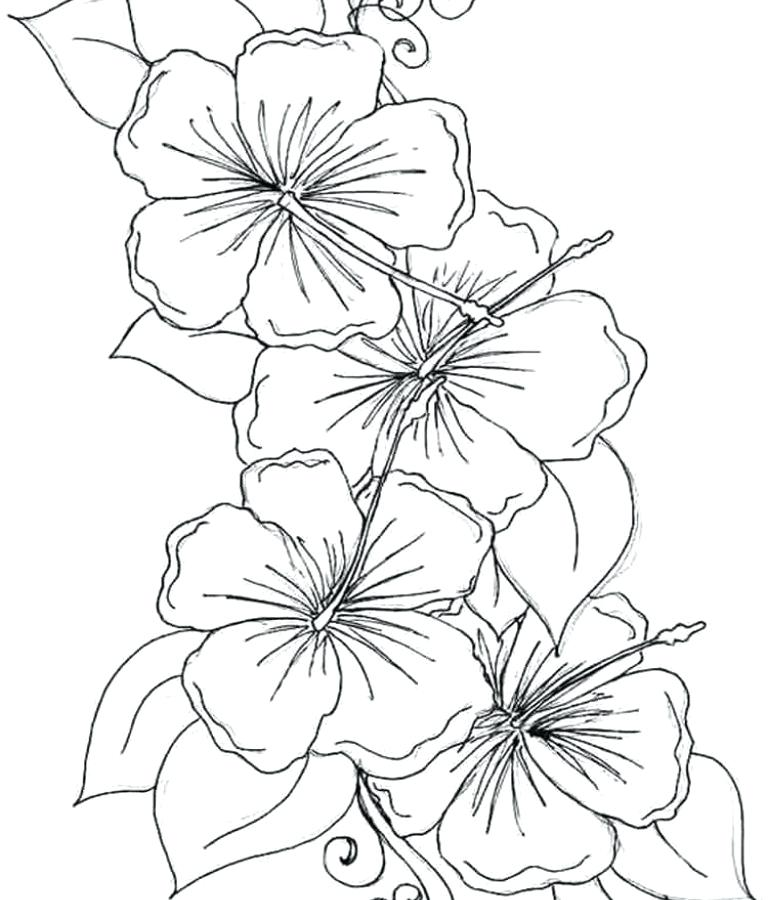 768x900 Flower Bouquets Coloring Pages