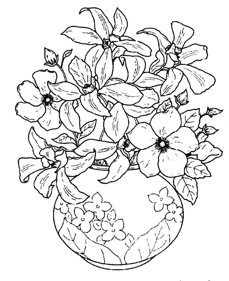 801x984 Unbelievable Vase And Coloring Page Pic For Flower Arrangement