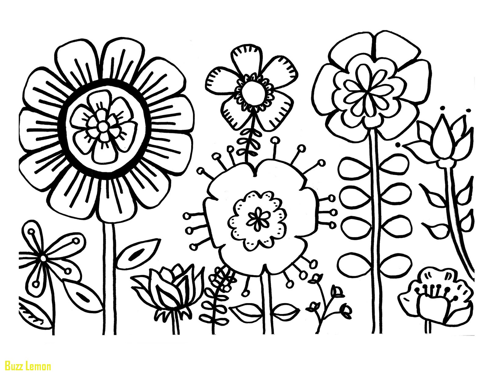 1600x1234 Best Of Coloring Page Flowers Buzz Coloring