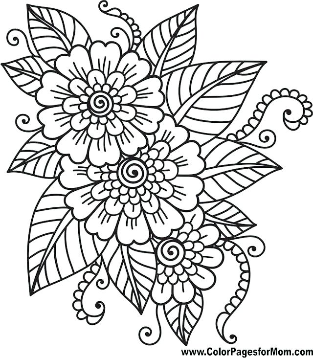 640x732 Coloring Pages Flowers
