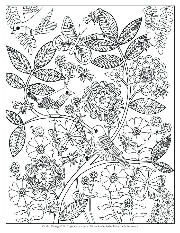 700x906 Border Coloring Pages Printable Butterfly And Flower Coloring Page