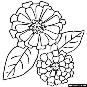 300x300 Zinnia Border Coloring Coloring Pages Crafts