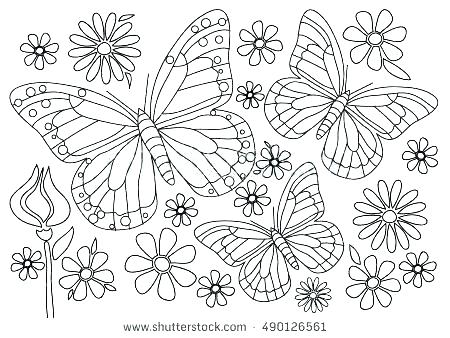 450x338 Cartoon Butterfly Coloring Pages