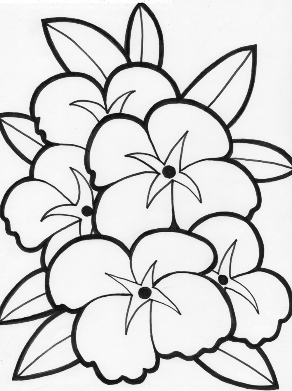 1000x1339 Perspective Single Flower Coloring Pages Best Outline For Kids