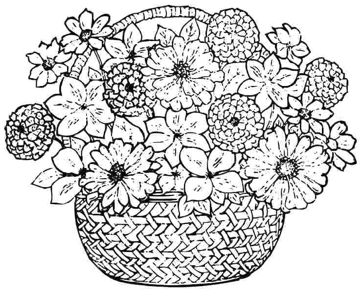 742x600 Amazing Spring Flowers Coloring Pages For Printable To Color