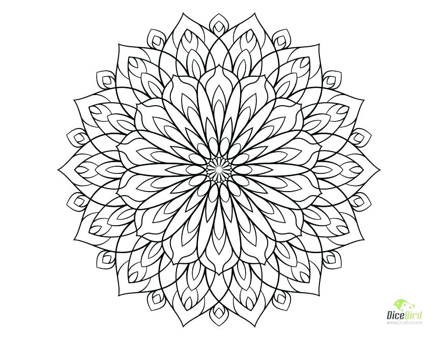 Flower Coloring Pages For Adults at GetDrawings.com | Free ...