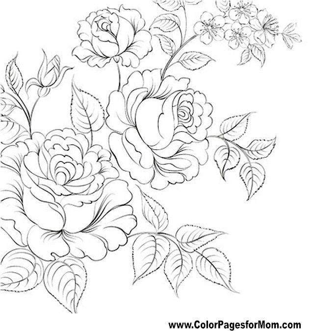 Flower Coloring Pages For Adults At Getdrawings Com Free