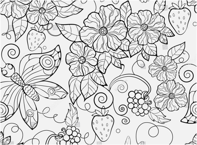 827x609 Flowers Coloring Pages Collection Butterfly And Flower Coloring