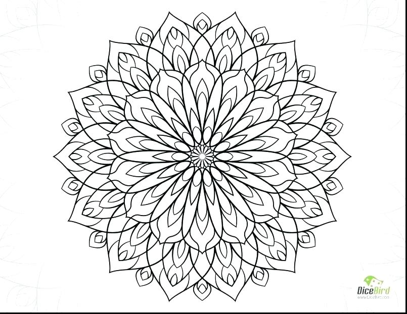 805x622 Spring Flower Coloring Pages Coloring Pages Of Cute Cute Flower