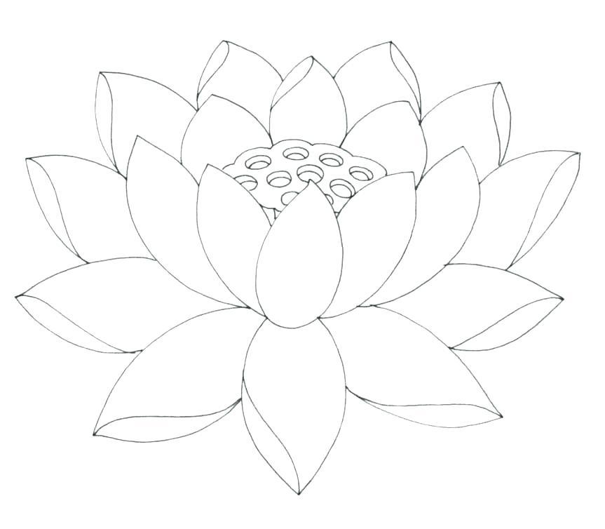 863x754 Free Printable Flowers