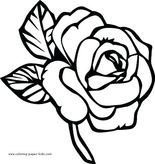 534x563 Free Printable Flowers Coloring Pages Coloring Free Printable
