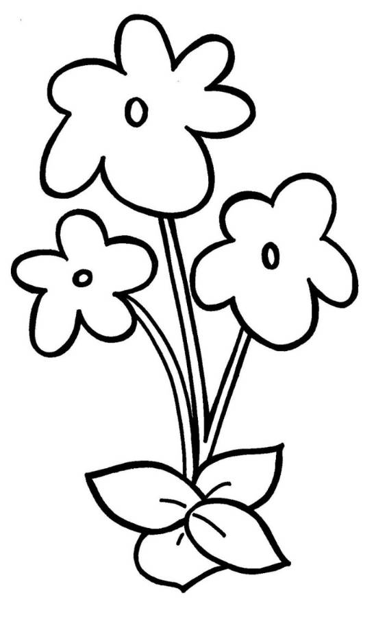 546x900 Easy Flower Coloring Pages Kids