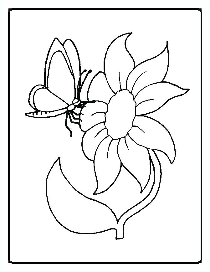 671x869 Coloring Pages Of Flowers For Preschool
