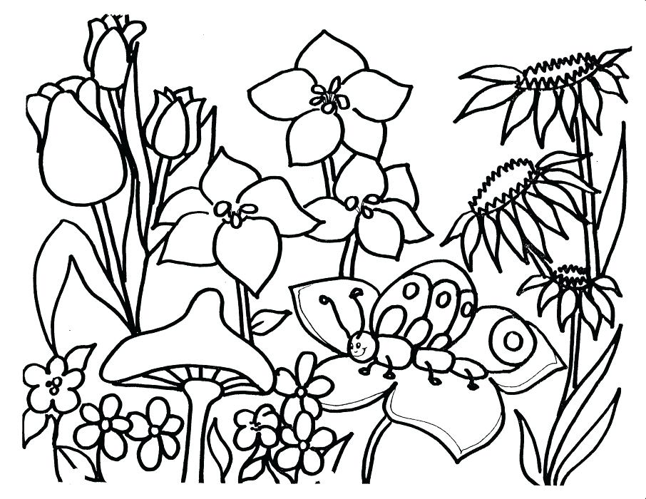 906x700 Flower Coloring Page Bouquet Of Different Flowers Coloring Page
