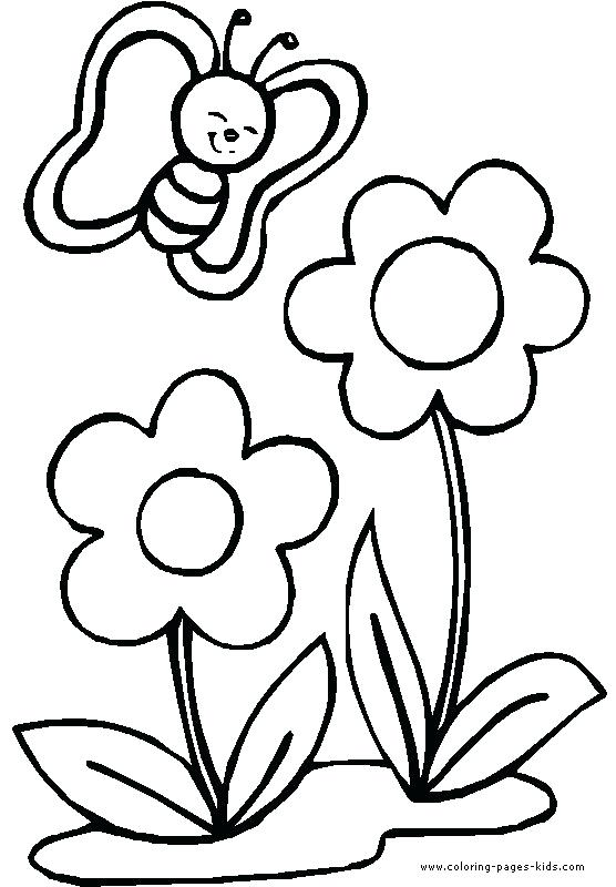 556x800 Flower Coloring Page Free Coloring Pages Flowers Free Flower