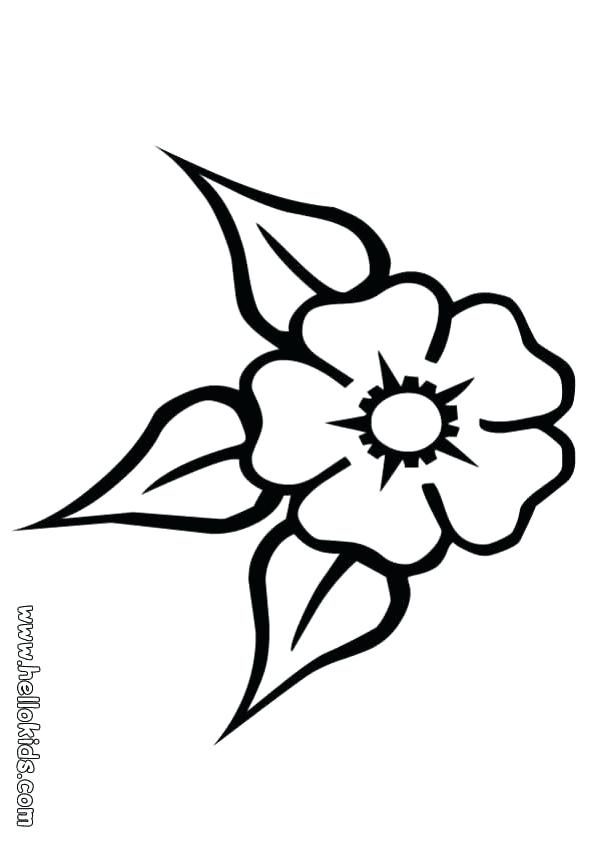 601x850 Flower Coloring Page Three Leaf Flower Three Leaf Flower Coloring