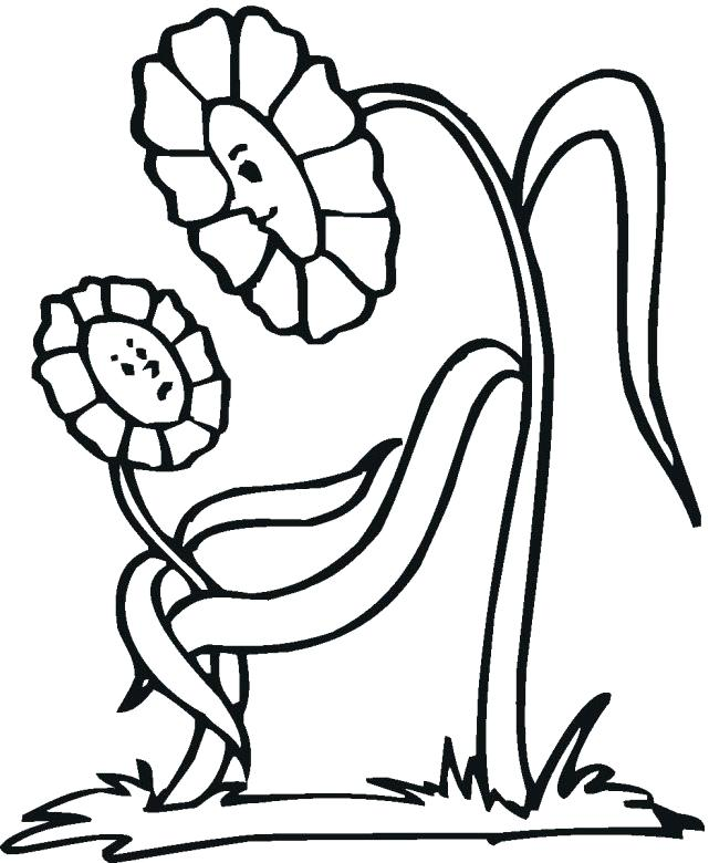 641x780 Flower Coloring Pages For Preschoolers Educational Flower