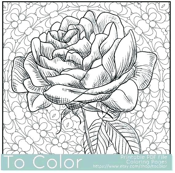 570x565 Flower Design Coloring Pages Adult Coloring Page Balls Coloring