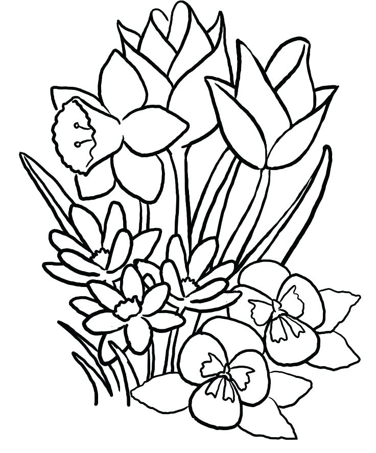 736x887 Girl Coloring Pages Free Coloring Pages For Girls Best Of Coloring