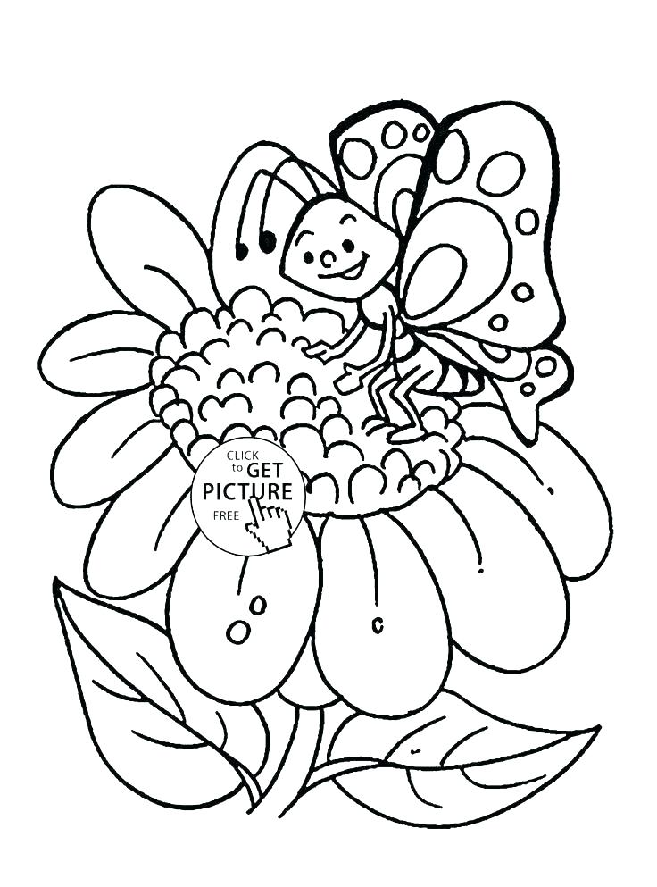736x993 Flower Coloring Pages Pdf Or Flower Coloring Page Hibiscus Flower