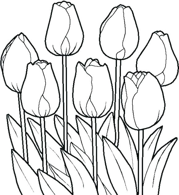 Colouring Alphabet Exercises Pdf | Printable flower coloring pages ... | 630x580