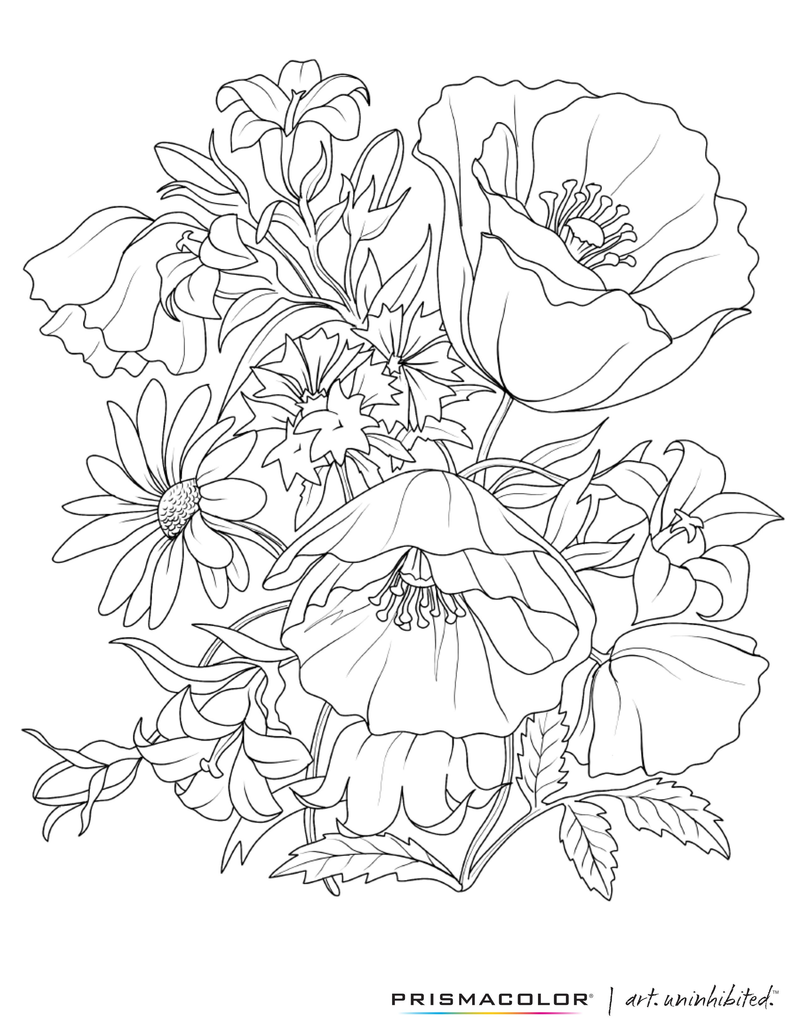 2550x3300 What A Beautiful Flower Adult Coloring Page! Coloring Pages