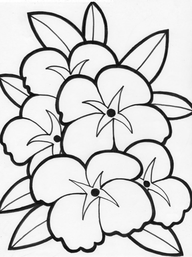 765x1024 Beautiful Flower Flowers Coloring Pages And Pretty