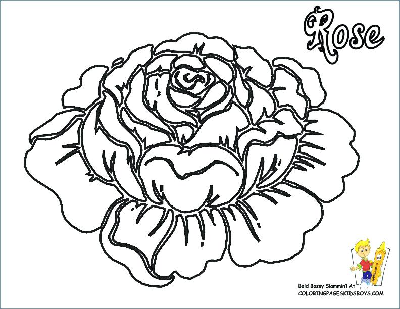 792x612 Flower Coloring Pages To Print Flowers Coloring Pages Print Flower