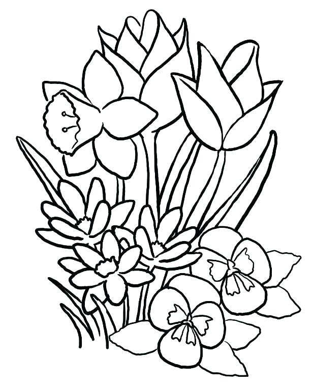 618x763 Spring Coloring Pages Kids Coloring Pages Printable Spring
