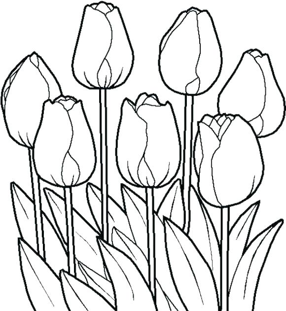 580x630 Flower Print Flower Print Out Free Printable Flower Colouring
