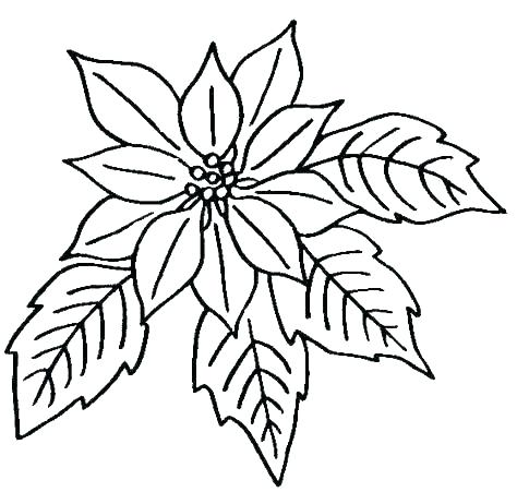 474x451 Flower Print Out Coloring Pages Print Out Coloring Pages Flowers