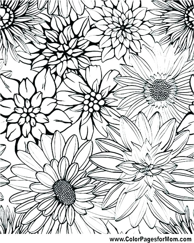 640x799 Advanced Coloring Pages To Print Free Advanced Coloring Pages