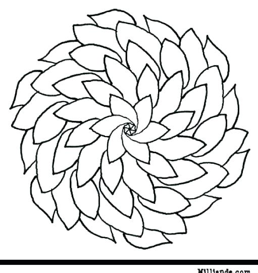 511x540 Flowers Coloring Pages Printable
