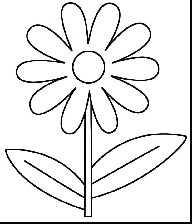 615x718 Excellent Spring Flower Coloring Pages Online Print Out Lovable