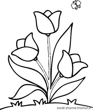 360x425 Easy Flower Coloring Pages