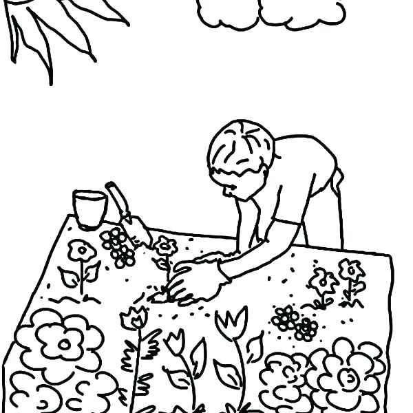 600x600 Daisy Flower Coloring Pages Flower Garden Coloring Page Garden
