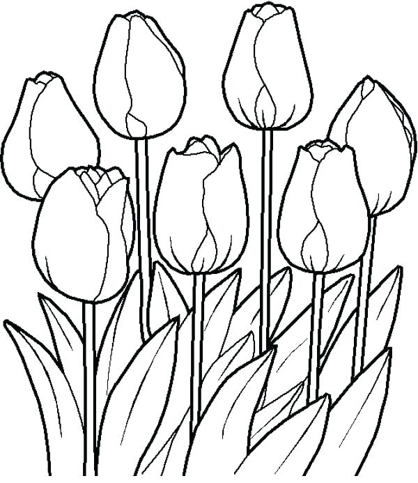 600x693 Flower Garden Coloring Page Garden Coloring Page Flower Garden