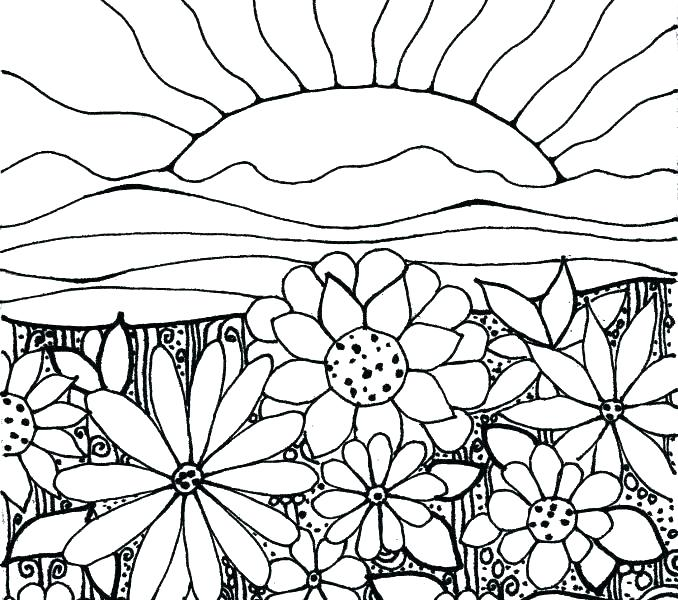 678x600 Flower Garden Coloring Pages Luxury Flower Garden Coloring Page